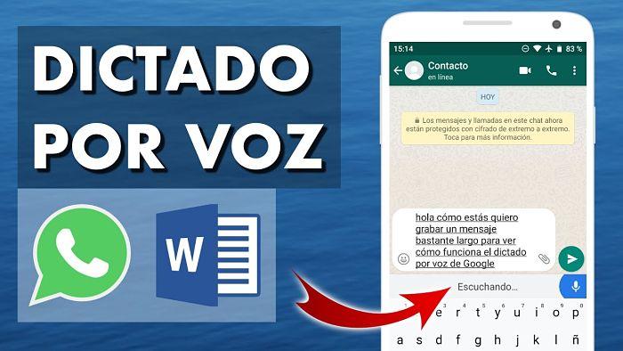Cómo Activar El Dictado Por Voz En WhatsApp